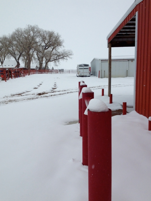 Snow on Red Posts-2