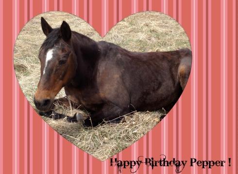 Pepper-Birthday-31