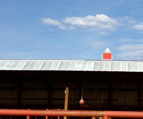 Red-Steeple-2,jpg