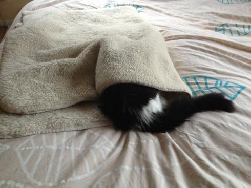 Mija-under-fleece