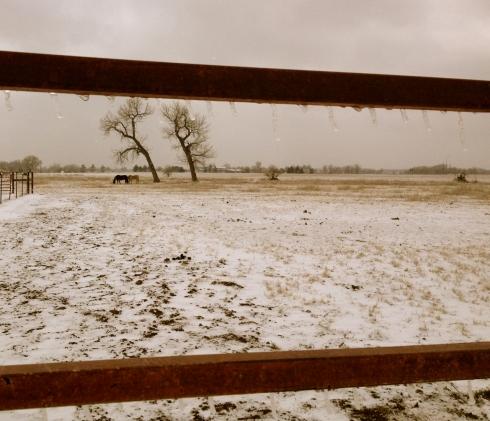 Ice-on-fence