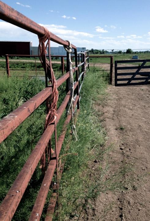 pasture-gate