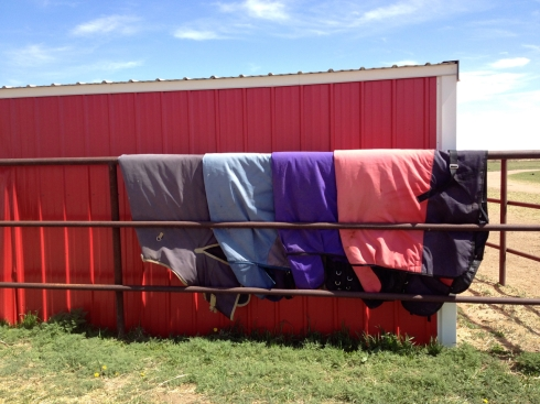 Horse-Blankets-on-Rail